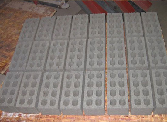 bricks produced by hydraulic block machine